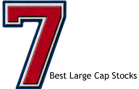 best large cap stock