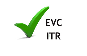 Electronic Verification Code