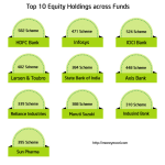 Mutual Fund Holdings gives 100% Return in 1 year
