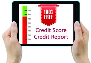 credit information report